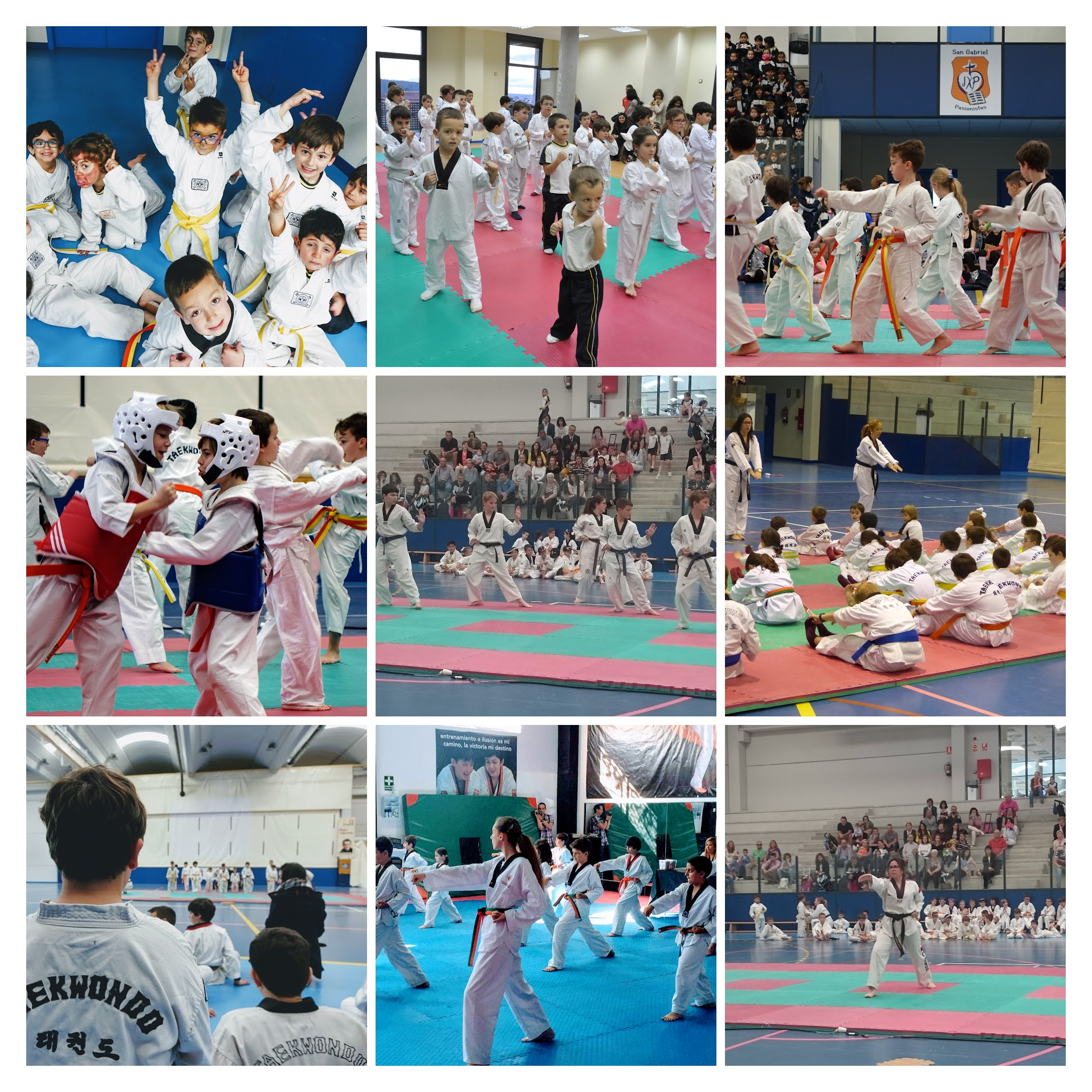 Taekwondo web collage